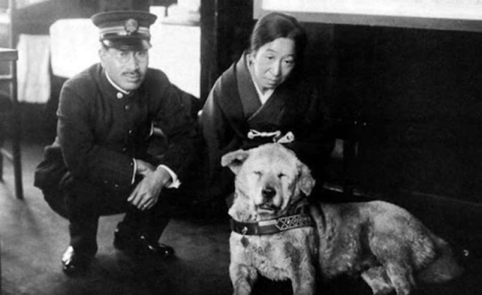 Хатіко - найвідоміший у світі пес